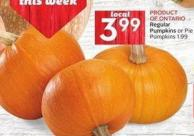 Regular Pumpkins or Pie Pumpkins