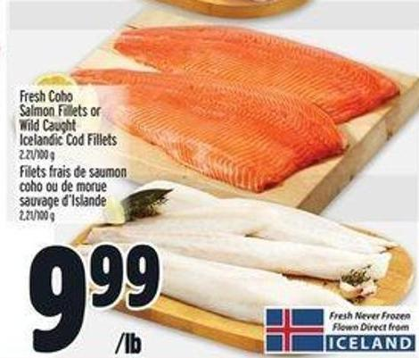 Fresh Coho Salmon Fillets Or Wild Caught Icelandic Cod Fillets