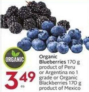 Organic Blueberries 170 g Product of Peru or Argentina No 1 Grade or Organic Blackberries 170 g Product of Mexico