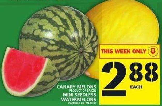 Canary Melons Or Mini Seedless Watermelons
