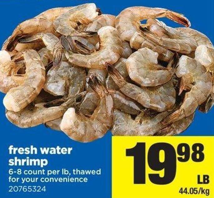Fresh Water Shrimp