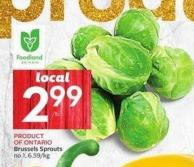 Brussels Sprouts No 1