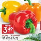 Red - Yellow or Orange Field Peppers