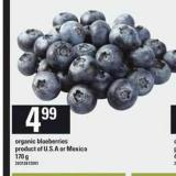 Organic Blueberries - 170 g