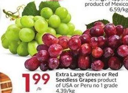 Extra Large Green or Red Seedless Grapes Product of USA or Peru No 1 Grade 4.39/kg