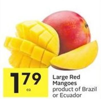 Large Red Mangoes Product of Brazil or Ecuador
