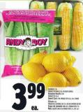 Lemons 2 Lb  Product Of Spain - U.S.A. Or South Africa Romaine Hearts 3 Pk Product Of U.S.A. Sweet Corn 4 Pk Product Of U.S.A. - No. 1grade
