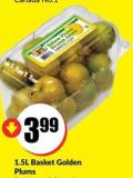 1.5l Basket Golden Plums Product of Ontario Canada No.1