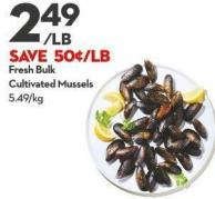 Fresh Bulk Cultivated Mussels
