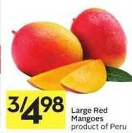 Large Red Mangoes