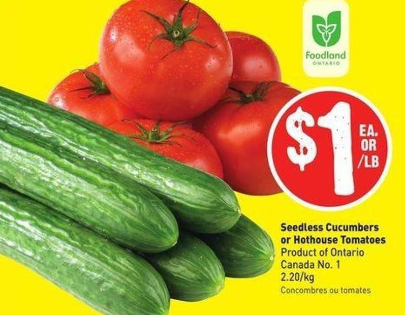 Seedless Cucumbers or Hothouse Tomatoes Product of Ontario Canada No. 1 2.20/kg