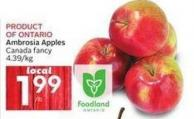 Ambrosia Apples Canada Fancy