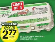 Selection Large White Eggs