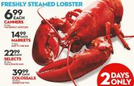 Freshly Steamed Lobster 40-60 Oz
