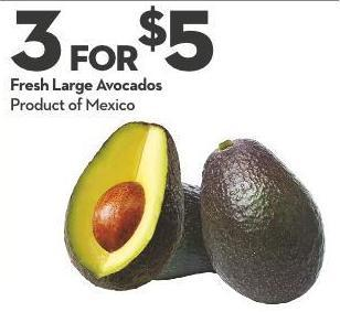 Fresh Large Avocados