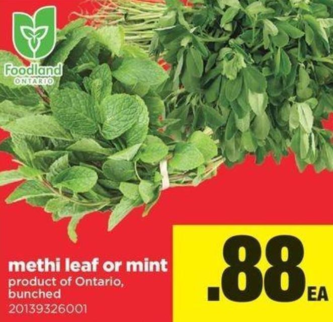 Methi Leaf Or Mint - Bunched