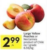 Large Yellow Peaches or Nectarines Product of Chile No 1 Grade 6.59/kg
