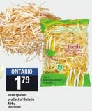 Bean Sprouts - 454 g