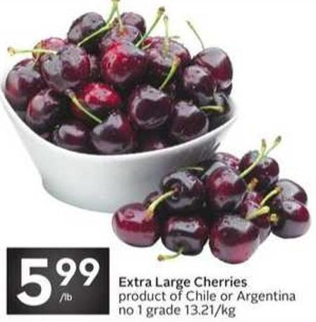 Extra Large Cherries