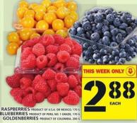 Raspberries Or Blueberries Or Goldenberries