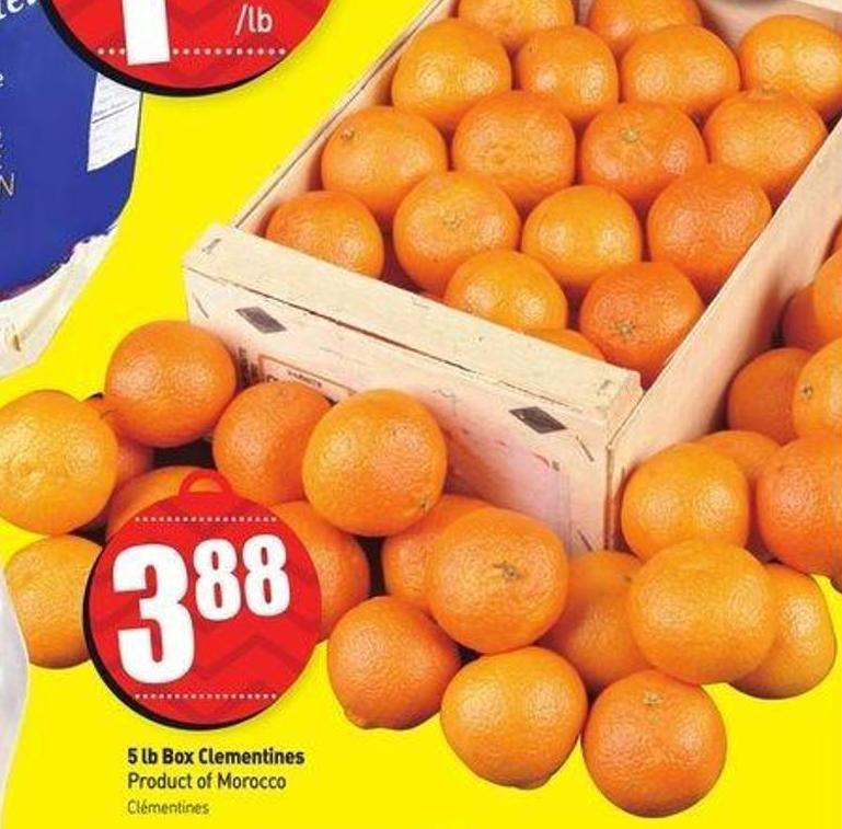 5 Lb Box Clementines Product of Morocco