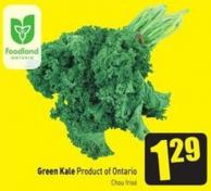Green Kale Product of Ontario Chou Frisé