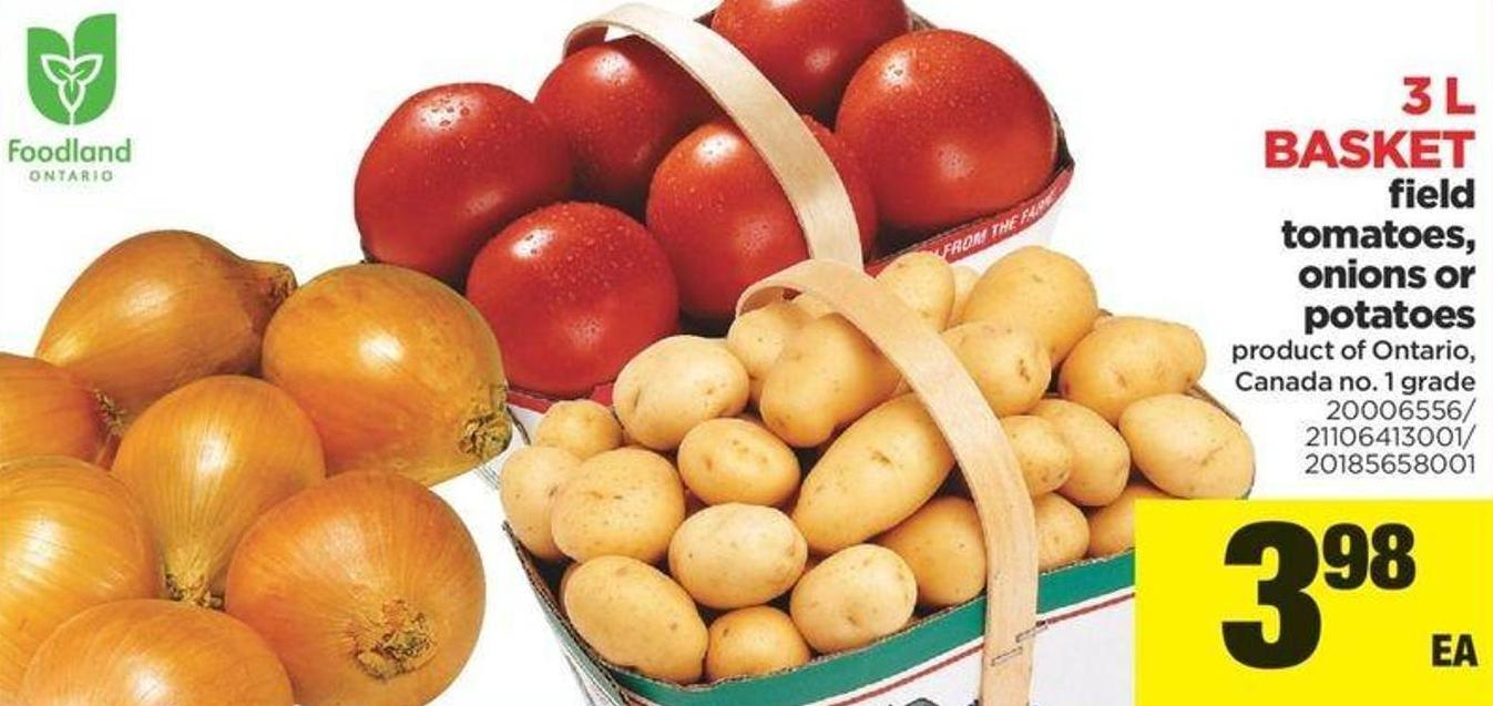 Field Tomatoes - Onions Or Potatoes - 3 L Basket