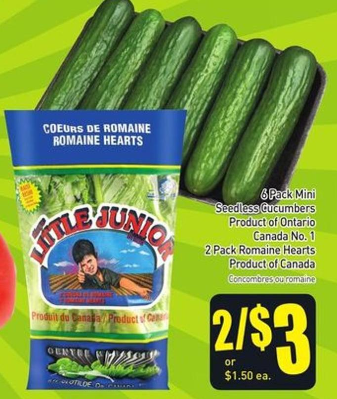 6 Pack Mini Seedless Cucumbers Product of Ontario Canada No. 1 2 Pack Romaine Hearts Product of Canada
