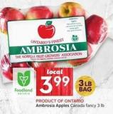 Ambrosia Apples Canada Fancy 3 Lb
