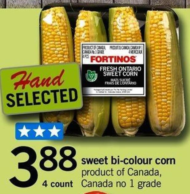Sweet Bi-colour Corn - 4 Count