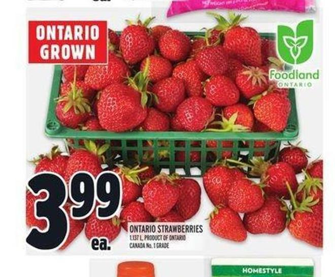 Ontario Strawberries