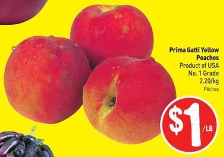 Prima Gatti Yellow Peaches Product of USA No. 1 Grade 2.20/kg