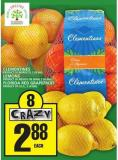 Clementines Or Lemons Or Florida Red Grapefruit