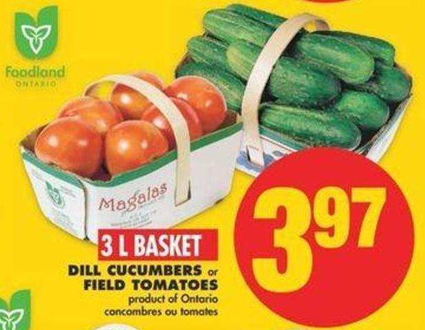 Dill Cucumbers Or Field Tomatoes - 3 L Basket