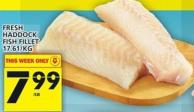 Fresh Haddock Fish Fillet