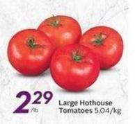 Large Hothouse Tomatoes