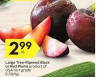 Large Tree-ripened Black or Red Plums