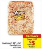 Molinaro's 12in X 16in Family Pizza
