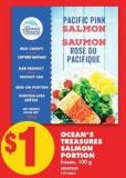 Ocean's Treasures Salmon Portion - 100 g