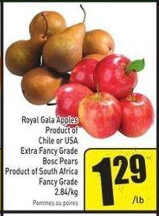 Royal Gala Apples Product of Chile or USA Extra Fancy Grade Bosc Pears Product of South Africa Fancy Grade 2.84/kg