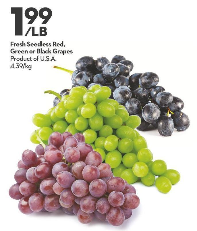Fresh Seedless Red - Green or Black Grapes