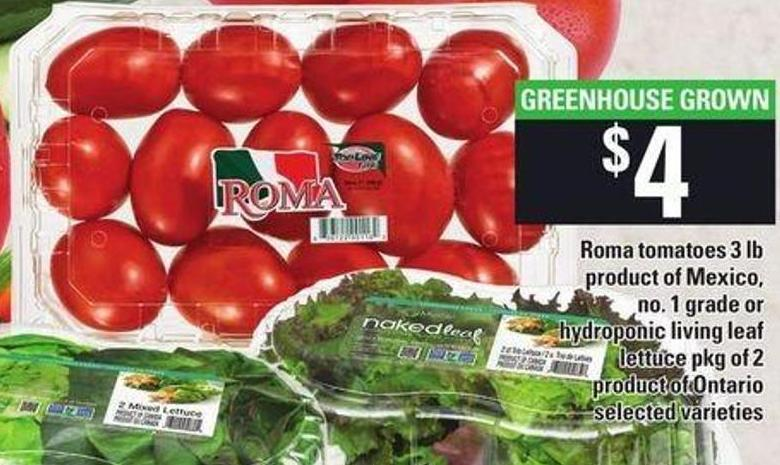 Roma Tomatoes - 3 Lb or Hydroponic Living Leaf Lettuce - Pkg of 2