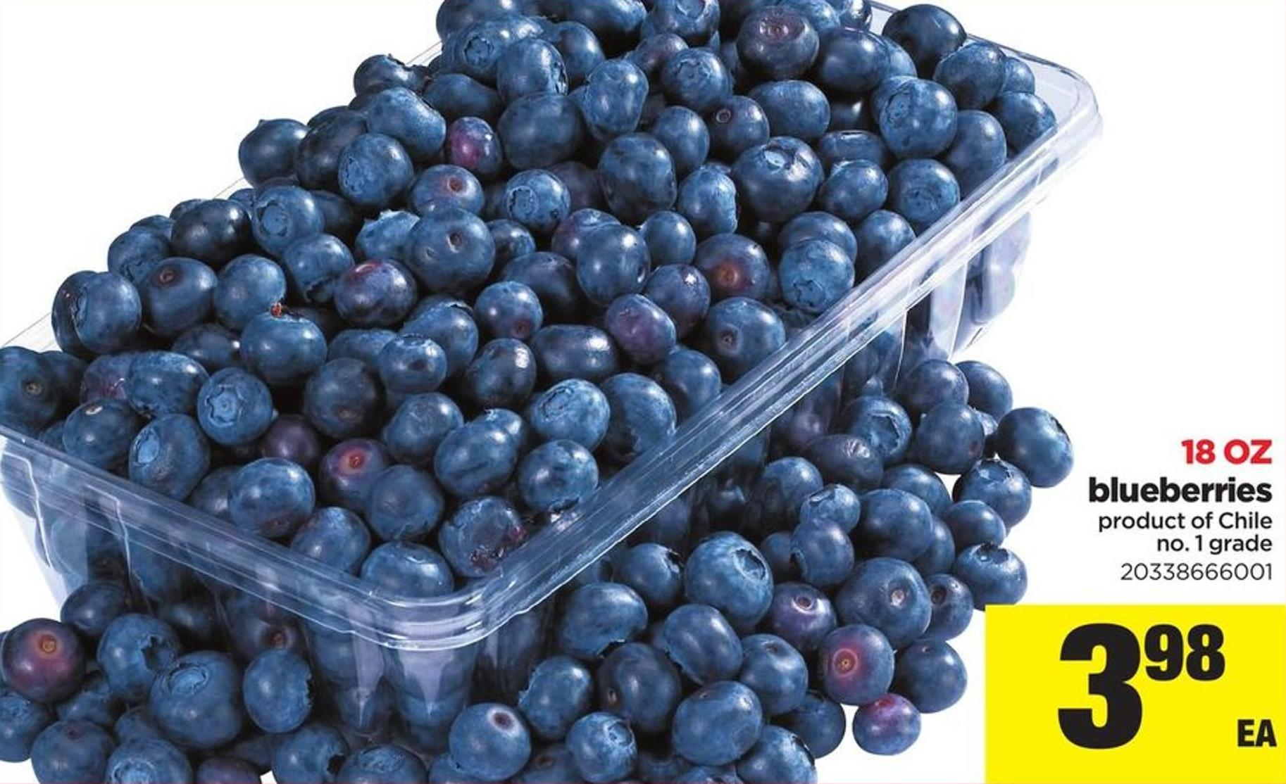 Blueberries 18 Oz