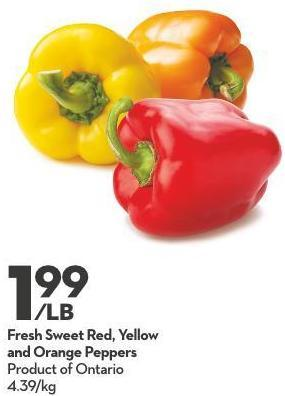 Fresh Sweet Red - Yellow and Orange Peppers