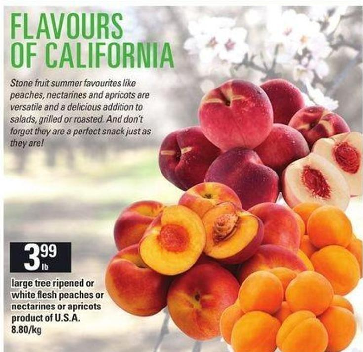 Large Tree Ripened Or White Flesh Peaches Or Nectarines Or Apricots