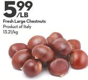 Fresh Large Chestnuts