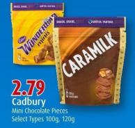 Cadbury Mini Chocolate Pieces