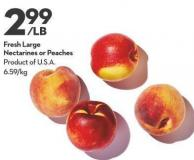 Fresh Large  Nectarines or Peaches