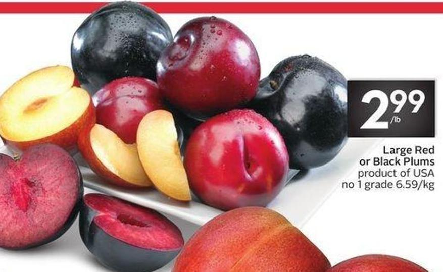 Large Red or Black Plums