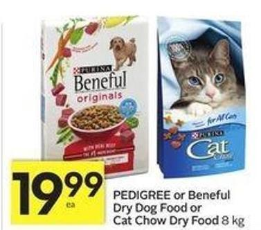 Pedigree or Beneful Dry Dog Food or Cat Chow Dry Food